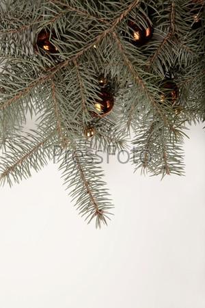 Желтые новогодние шары на елочной ветке