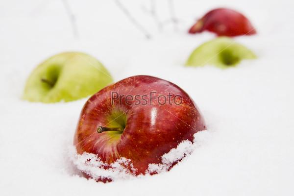 Две пары яблок на снегу