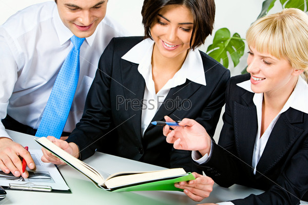 Portrait of three business people planning their work in the office