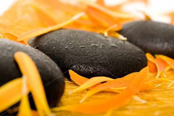 Row of black spa stones in an environment of orange petals