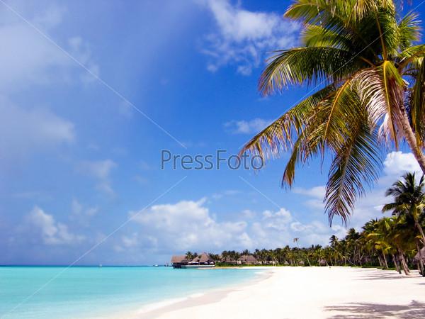 Фотография на тему Живописный вид тропического побережья