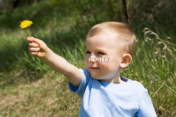 Фотография на тему Симпатичный мальчик фоне зеленой травы протягивает желтый одуванчик