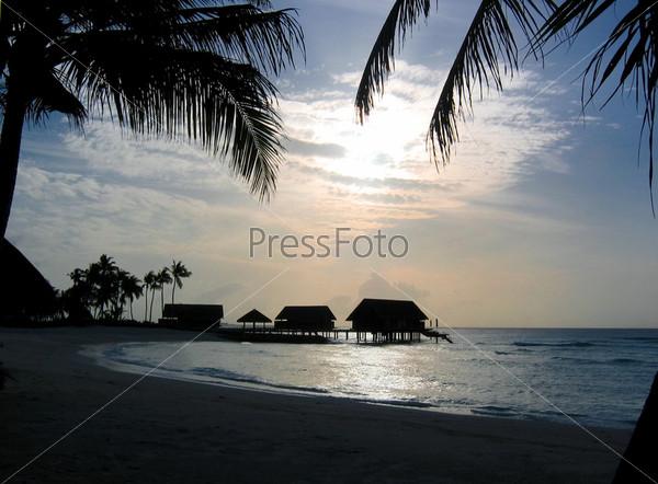 Пальмы и бунгало на берегу океана