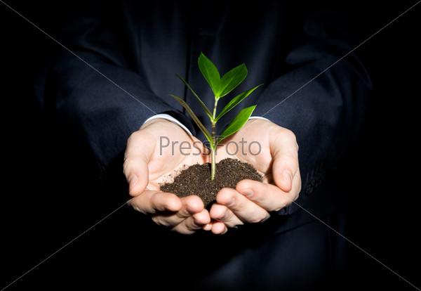 Человек на черном фоне держит ветку с листьями, посаженную в землю