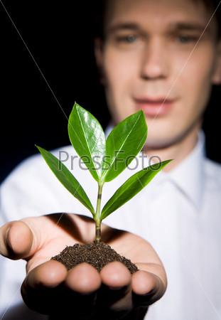 Мужчина держит зеленый росток, посаженный в землю