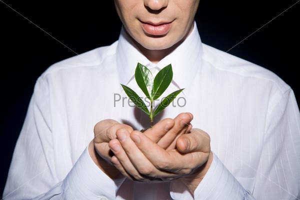Мужчина с заботой смотрит на растение в его руках