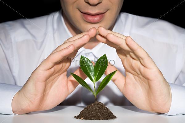 Бизнесмен в белой рубашке держит руки над растением
