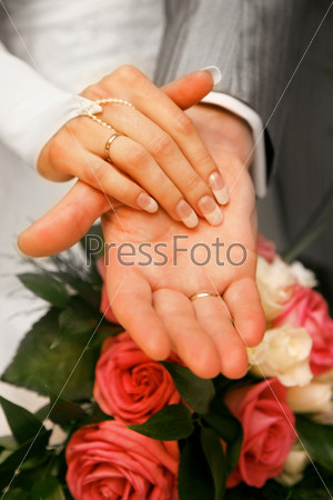 Hands of newly-married