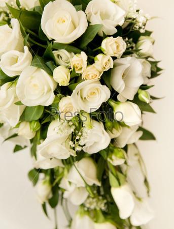 Букет белых роз на белом фоне