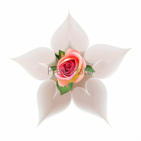 Круг их бумажных сердец с расположенной в центре розой