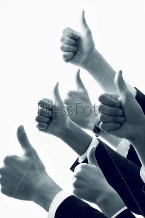 Фотография на тему Множество человеческих рук с поднятым вверх большим пальцем