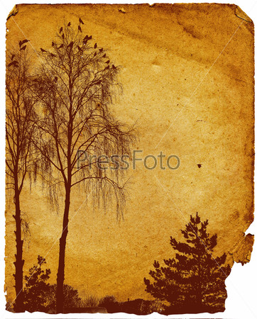 Старый рисунок деревьев