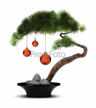 Chinese New Year pine tree