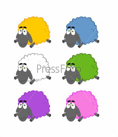 Группа цветных овец