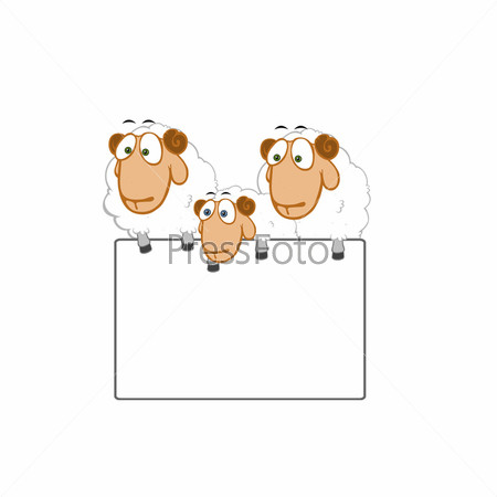 Овцы с табличкой под текст