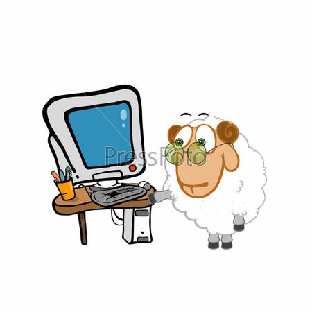 Умная овечка возле компьютера