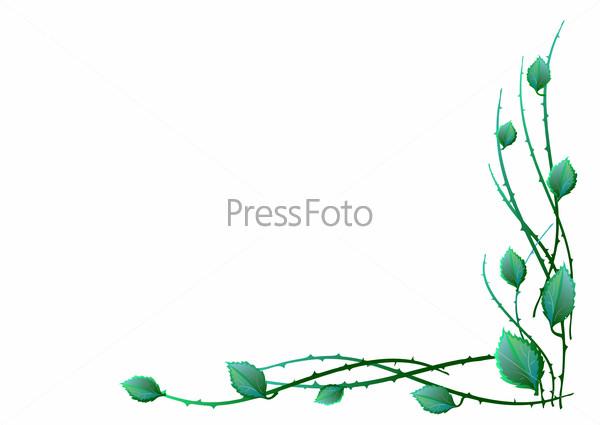 Фото узоров на белом