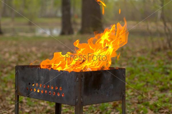 Штрафы за открытый огонь на участке