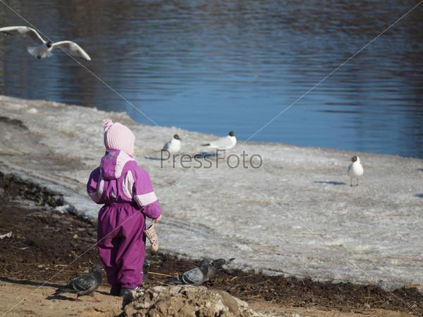 The kid feeds birds