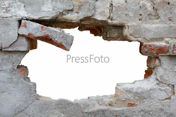 foto-russkih-zhop-rakom