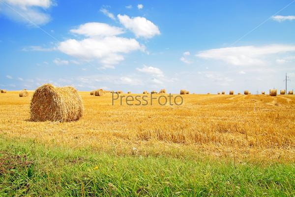 Фото со стогами сена фото 76-520