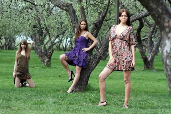 Три девушки позируют