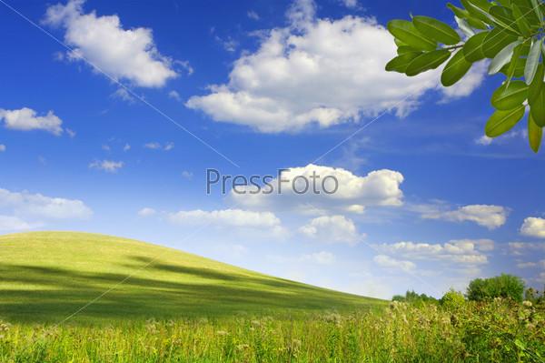 Красивый летний пейзаж
