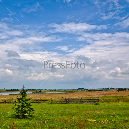 Nature Rural Landscape