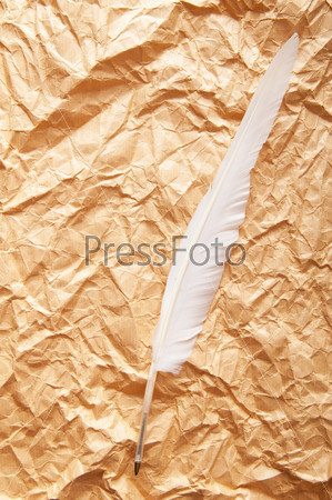 Paper and feather in vintage writing concept