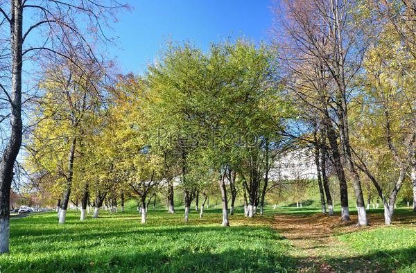 Дорожка в парке. Осенний день
