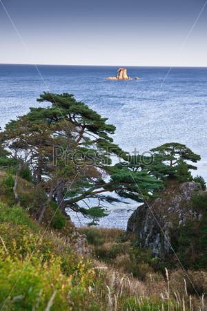 small rocky island in the sea