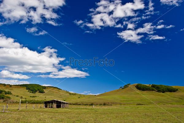 abandoned field