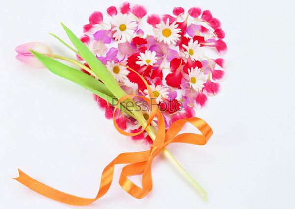 Тюльпан и сердце из лепестков