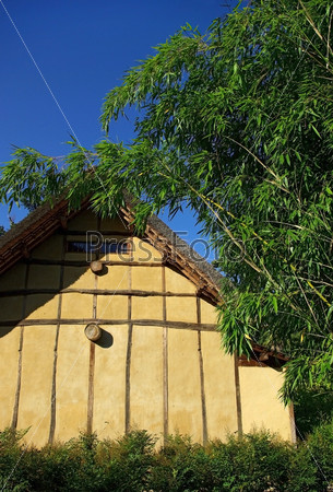 House in bamboo thickets