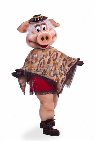Pig mascot costume dance in poncho
