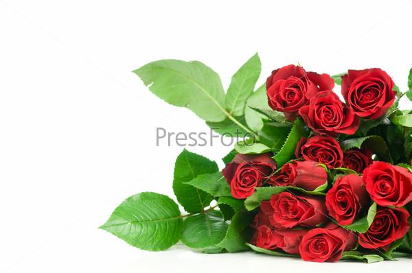 Букет красных роз на белом фоне