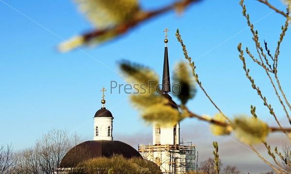 Верба на фоне церкви