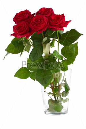 Букет роз фотография