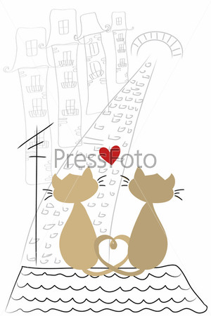 Коты и кошки на крыше
