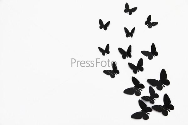черные на белом фоне картинки