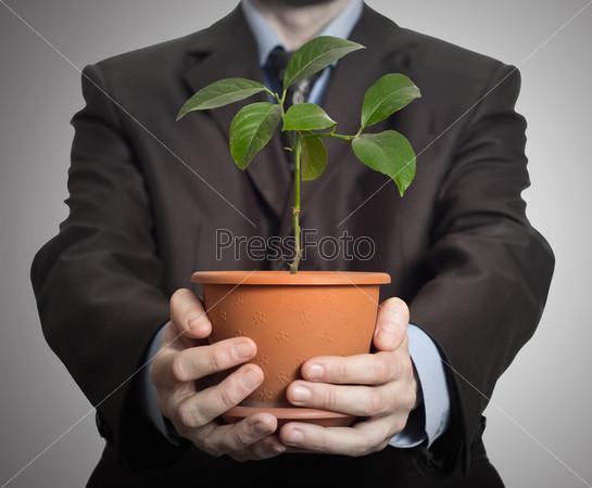 Предприниматель держит в руках растение в горшке на темном фоне