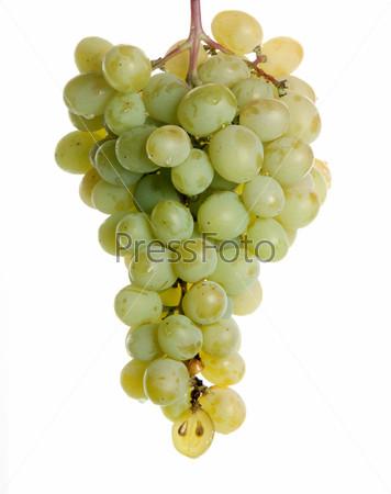 Фотография на тему Зеленый виноград на белом фоне