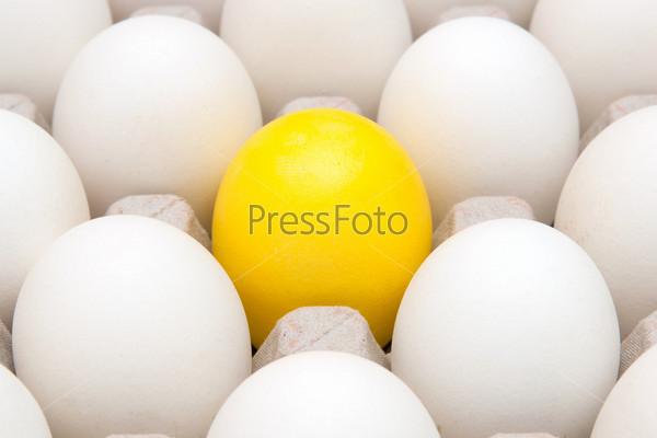 Фотография на тему Желтое Яйцо среди белых яиц