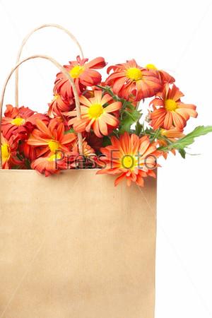 Фотография на тему Букет из красных хризантем в бумажном пакете на белом фоне
