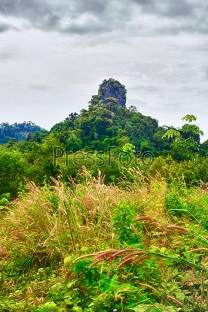 Большая гора с зелеными деревьями в Таиланде