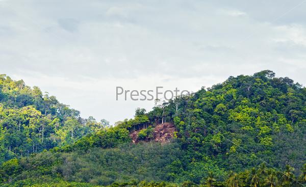 Горы с зелеными деревьями в Краби, Таиланд