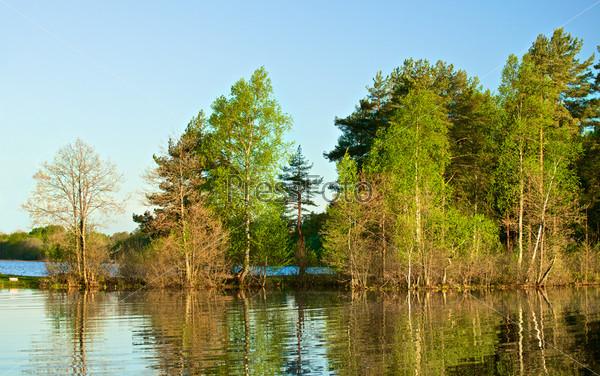 Голубое озеро в лесу