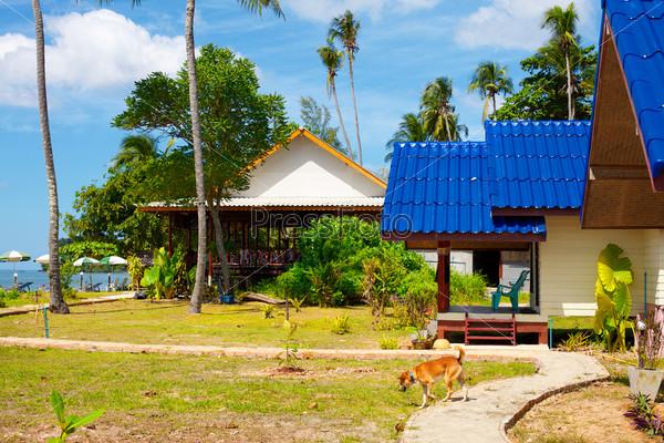 Курортные бунгало на берегу, Кох Ланта Таиланд