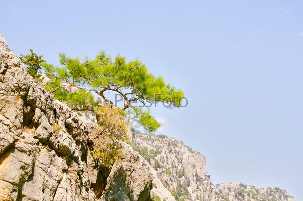 Прекрасный вид на Зеленый каньон в Турции
