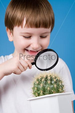 Улыбающийся мальчик смотрит через увеличительное стекло на кактус на синем фоне